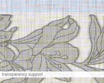 transparency_support